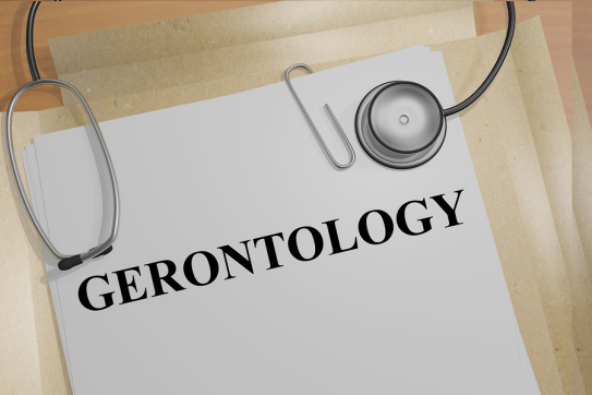 Gerontology Research Program